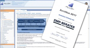 gmp-berater-online